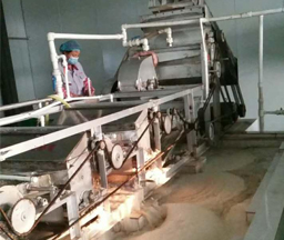 China 150Tons/day Input Sweet Potato Starch Plant