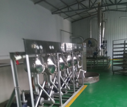 China 200Tons/day Sweet Potato Starch Production Line